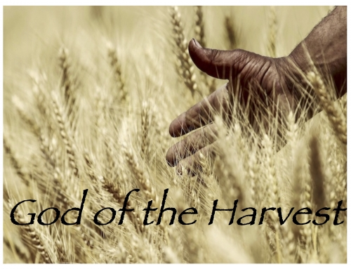 God of the Harvest: Generations (Ruth 4:18-22, Psalm 90:1-2)